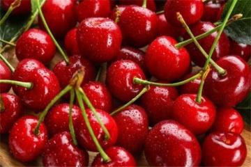 女人补血要吃的10种水果 好气色吃出来
