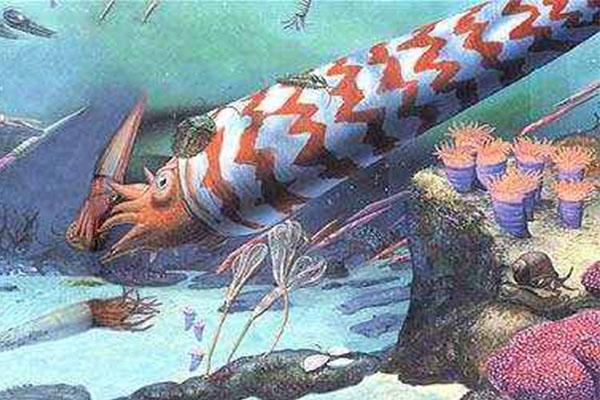 十大灭绝的可怕生物排名,一起看完,不要怂