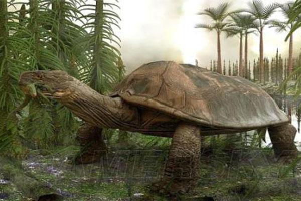 十大灭绝恐怖动物名单,所幸都已经成为化石