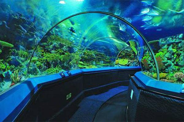 中国最大的海洋馆排名top7 长隆海洋王国上榜(获五大记录)