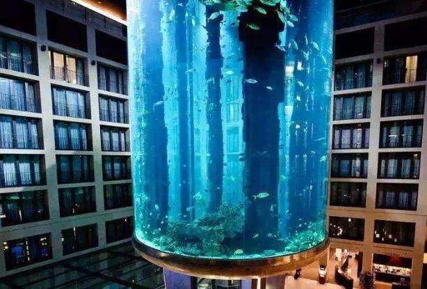 全球海洋馆排名 带你感受独特的海底世界