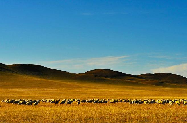 内蒙古十大旅游景点 领略别样的蒙古风情