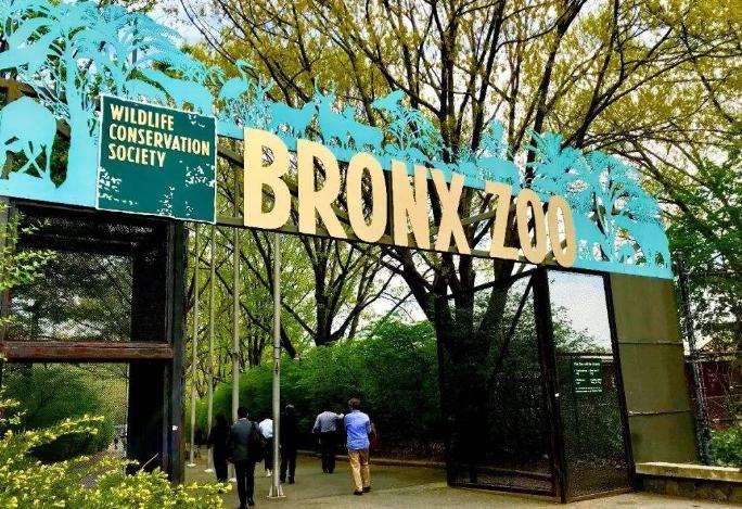 全球七大動物園排名 圣地亞哥動物園美國最大,第二無柵欄