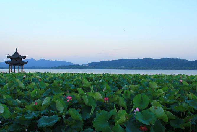 杭州旅游景點排名前十 西湖必去,這些你都聽說過嗎