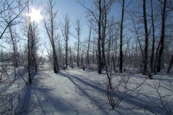 内蒙古十大名村,冷极村能冻到你怀疑人生