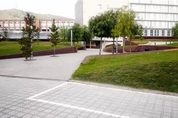德国排名前十的大学 慕尼黑大学登首榜,排名第二的竟然是它