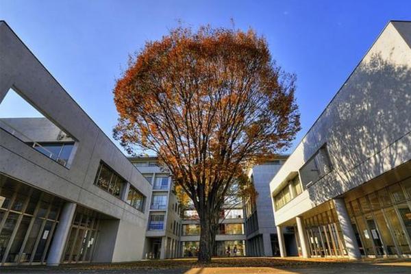 日本十大名校 东北大学上榜,日本第一所国立学校荣登首榜