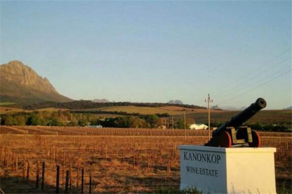 南非红酒哪个牌子好?南非红酒品牌排行榜