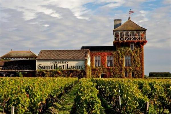 世界5大酒庄,拉菲/拉图酒庄上榜,各个都是声名远播