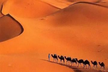 世界十大沙漠面积 戈壁沙漠排名第5,面积最大的竟然是他