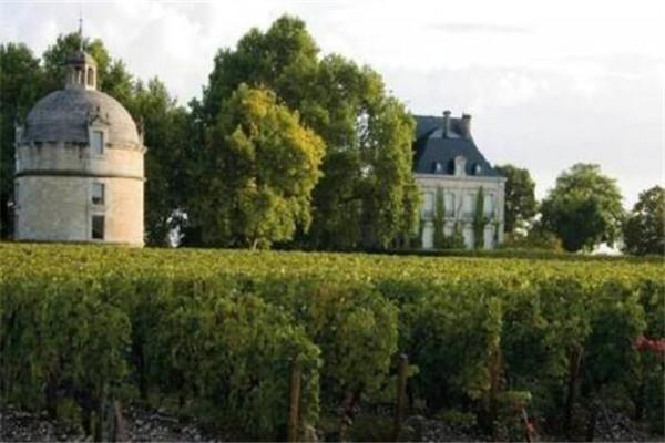 世界十大顶级红酒酒庄,拉菲没进前三,第一世界公认