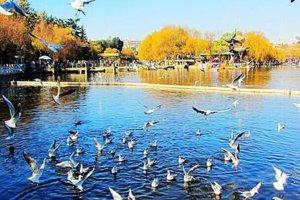 中国十大避暑城市:夏季避暑胜地 风景优美还有习习凉风