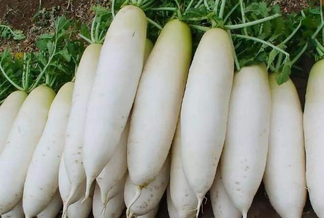 世界十大最美白的食物排行榜 吃出白皙皮肤就这么简单