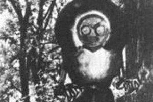 世界上十大怪物:第十名已被證實確實存在,你見過它嗎?