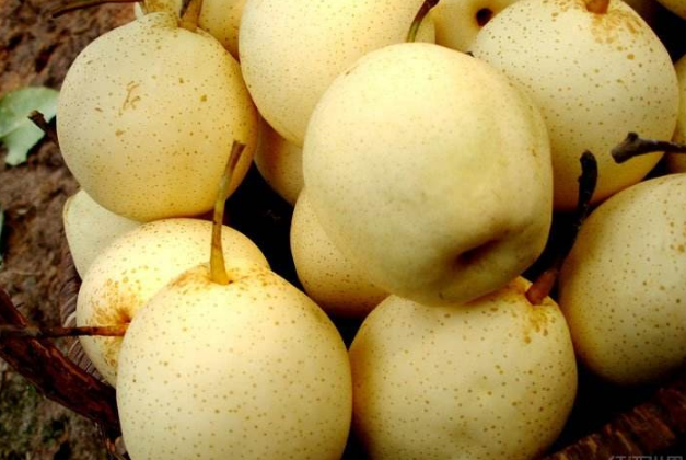 美白水果排行榜10強 讓你輕松吃出白皙肌膚