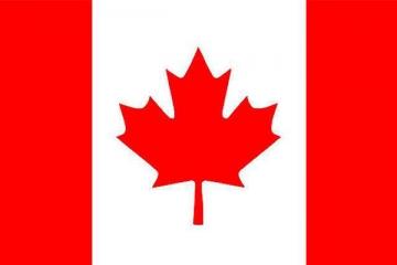 2019加拿大企业排行榜,2019加拿大营收最高的企业排名
