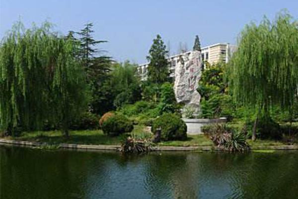 中国十大面积最大城市
