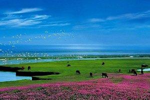 中國五大湖泊 八百里洞庭上榜 第一名最大時可達5100平方公里