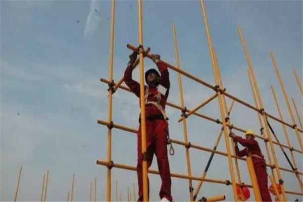 建筑技工工种排行榜,水电工/腻子工上榜,木工职业范围最广