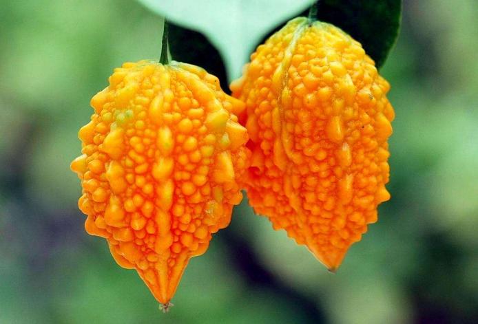 世界十大难吃水果 百香果上榜,金铃子最难吃
