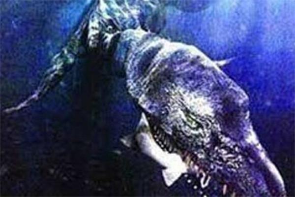世界十大怪物 幽微有强烈的体臭,最后一个你知道吗