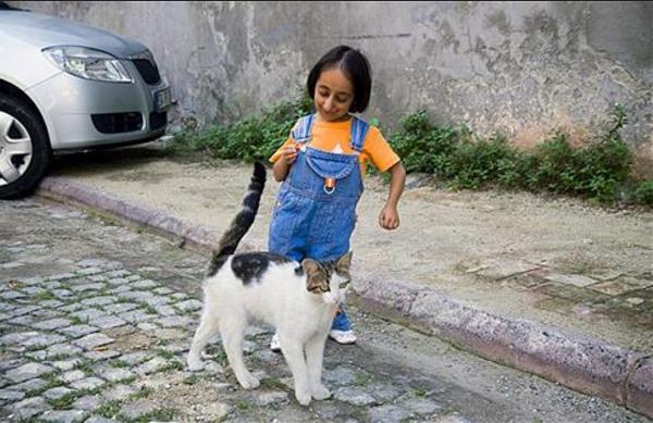 世界十大矮小人 最高只有72.4厘米,第一创下吉尼斯纪录