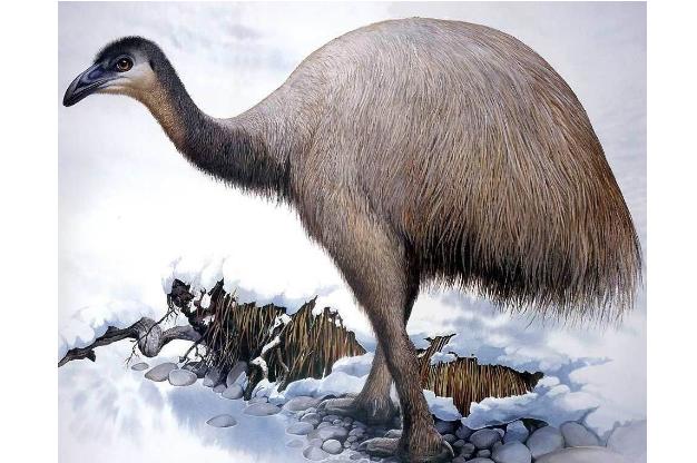 世界十大灭绝生物 史前生物霸王龙上榜,你认识几个