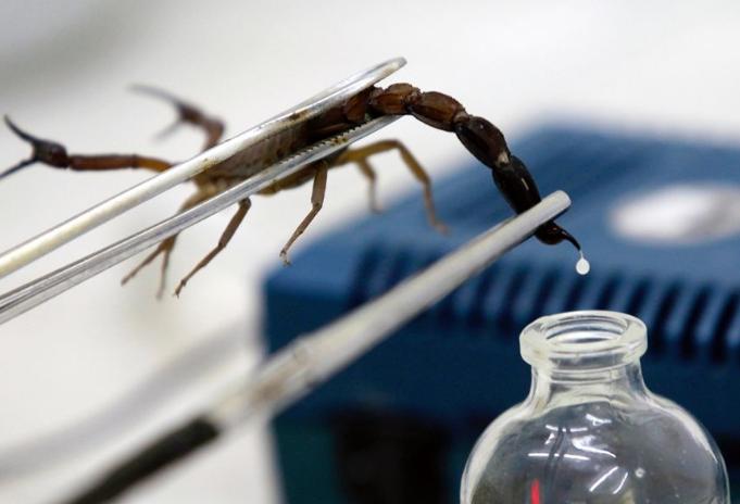 世界十大最贵的液体 娇兰香水上榜,第一为蝎毒