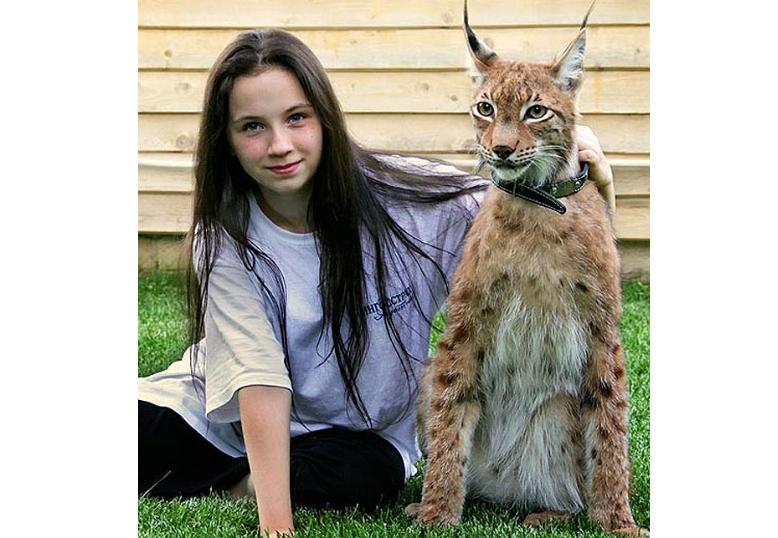 世界最怪十大宠物 狮子上榜,这些宠物你敢养吗