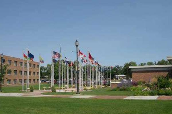 全球十大野鸡大学排行榜