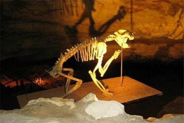 探秘世界最神秘的十大洞穴 天星村深洞深不见底(1026米)