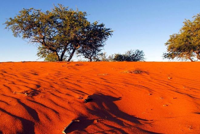世界十大沙漠 撒哈拉位列第一,中国上榜两个