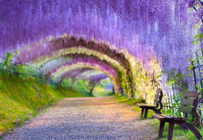 世界十大最浪漫旅游景点 最接近天堂的地方