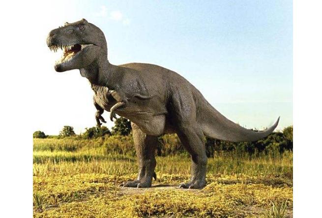 世界十大凶猛古生物 这些史前猛兽,你认识哪些