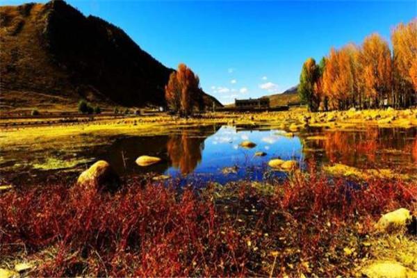 四川十大县城 射洪县上榜,第九是全国旅游强县