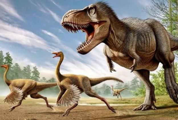 世界十大致命的恐龙 棘龙最可怕,霸王龙咬合力达12万牛顿