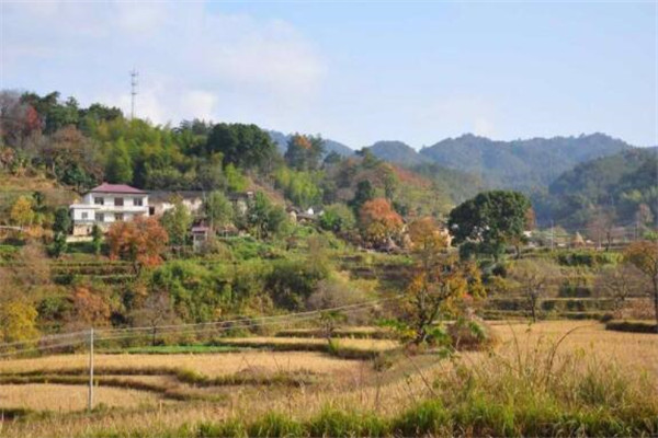安徽十大县城排名 岳西县森林覆盖率高,第九石灰岩矿储量高