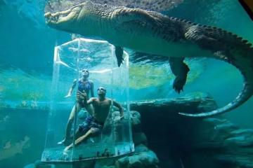 世界十大巨型鳄鱼 湾鳄体重超1600公斤,曾吞食上千日军