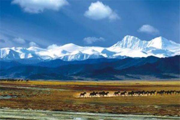 中国十大县城面积排名 双湖县上榜,榜首面积达20.23万平方千米