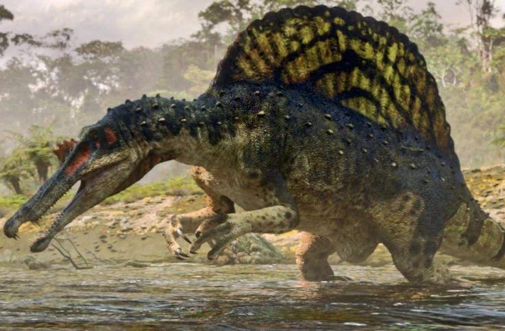 世界十大食肉恐龙 霸王龙位列第一,迅猛龙仅第九