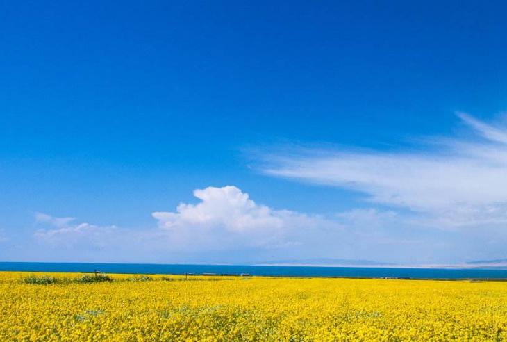 全国十大避暑胜地 清凉度夏,你选对地方了吗