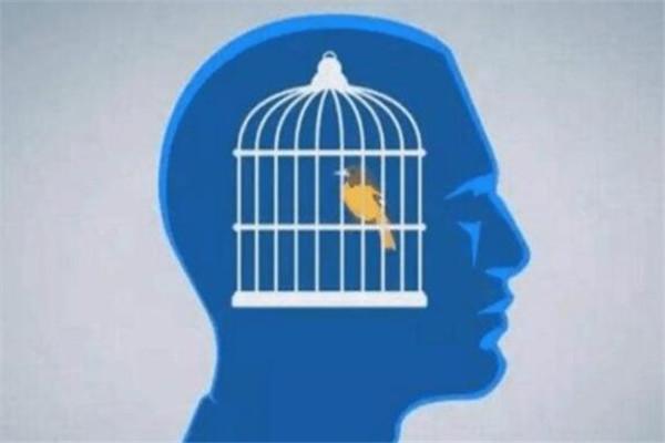 世界七大心理学效应 鸟笼效应你知道吗,看完绝对受益
