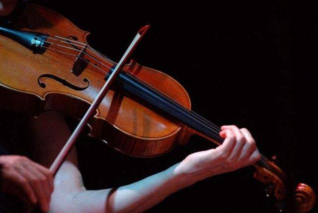 女孩十大最有气质的乐器 钢琴最受欢迎,琵琶位列第六