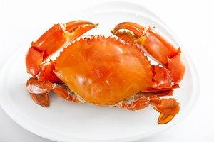 日本高清不卡码无码视频十种受欢迎的海鲜排行榜 小龙虾上榜 有你喜欢的吗