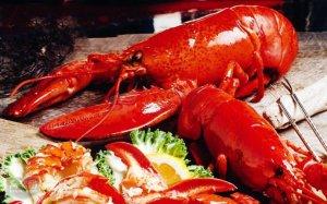 全球十大名贵海鲜排行榜 只有土豪才吃得起