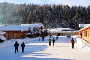 中国冬天必下雪的城市排行榜:中国雪乡、雪城纷纷上榜!