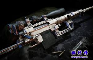 世界十大狙擊槍排行榜 可惜中國無一上榜
