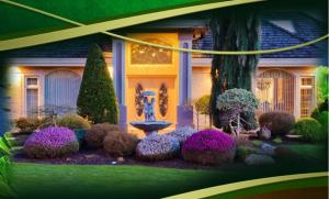 美化房屋庭院的五大好方式排行榜:第五性价比最高,用来种菜也很好