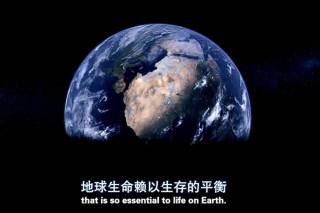 全球十大纪录片排行榜 高分纪录片,带你探索宇宙感受大自然