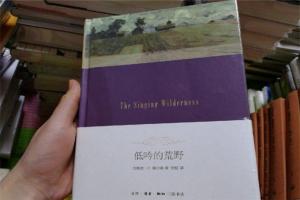 十大冷门文学作品 高质量冷门书籍有哪些